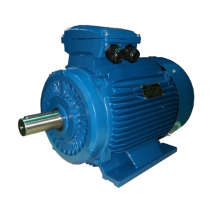 Universal Cast Iron IE3 motor